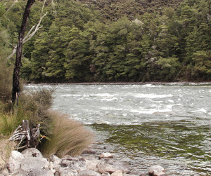 Jet boating on Waiau River, River Anduin